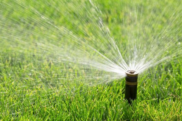 Jo Lindsay Water Wasting