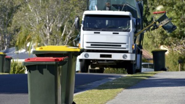 Article image for The Great Bin Debate: how early is too early