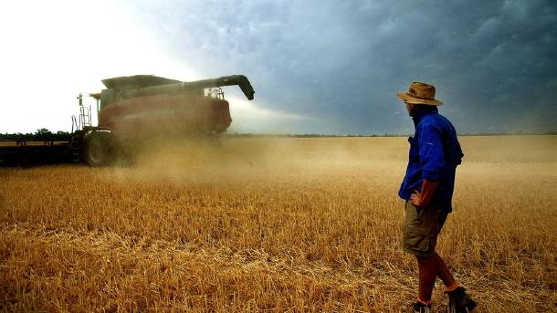 Article image for WA farmers are desperate for local West Aussies to work on their farms