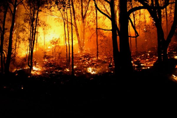 Drones impact bushfire fight