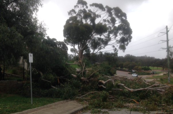 Storm causes chaos across Perth