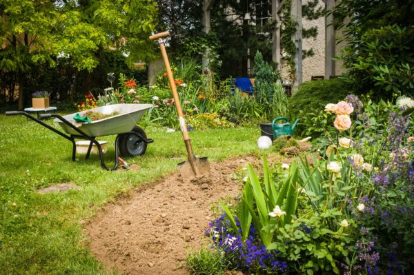 Spring has sprung, time to get back into the garden! With Sue McDougall