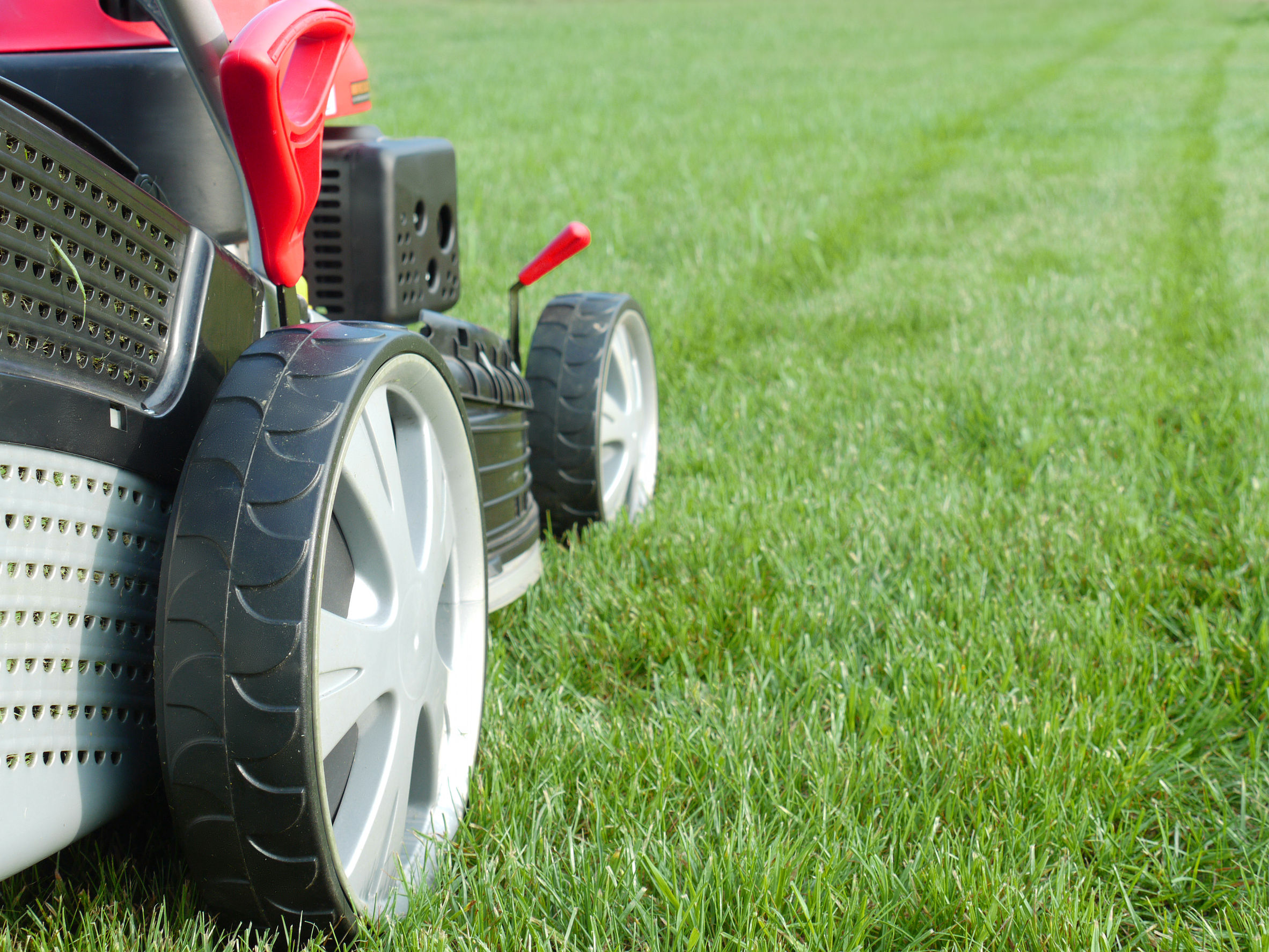 City of Belmont bans fake turf