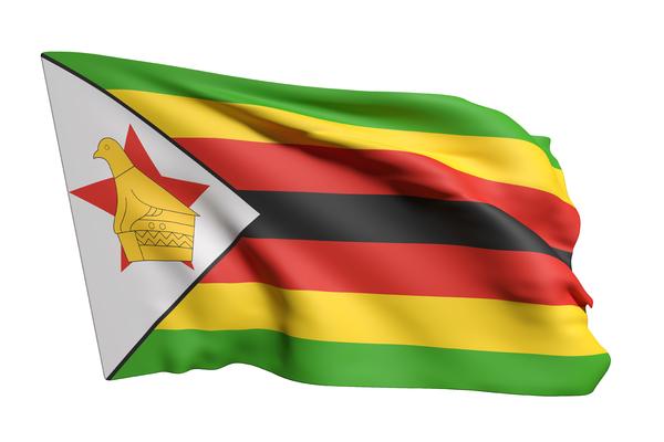 Adam Shand explains the Zimbabwe coup