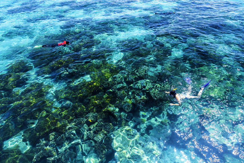 112 Recovery Reefs in Great Barrier Reef