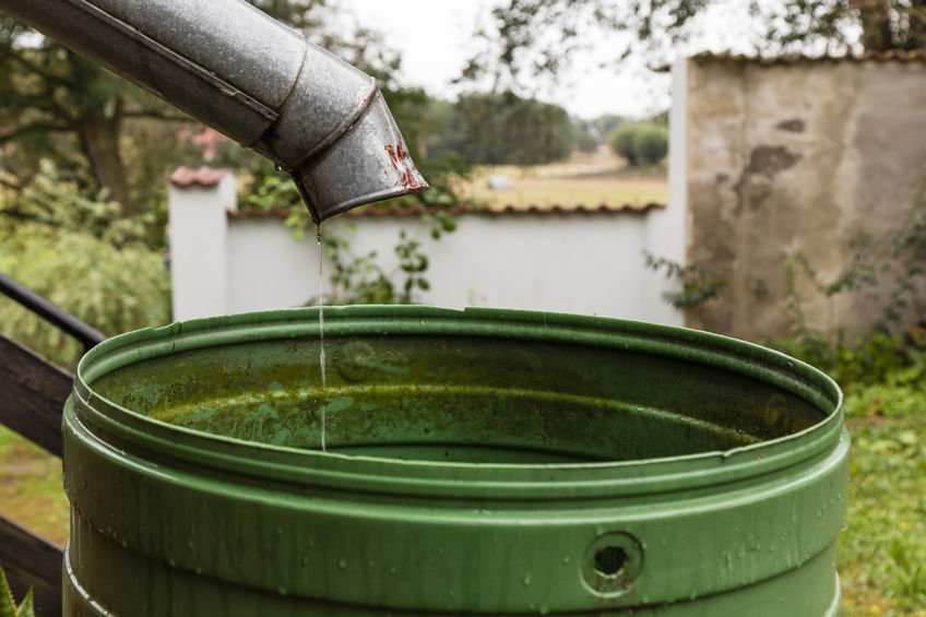 How Safe is Rainwater?