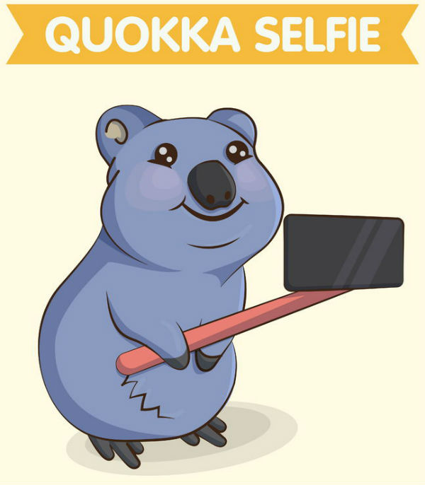 The Quokka Selfie