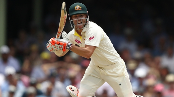 David Warner's triple century sparks debate