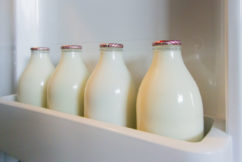 China's waste ban leads to return of glass milk bottle in Australia