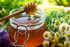 The Honey Festival