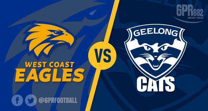 Article image for Eagles swoop on injured Cats
