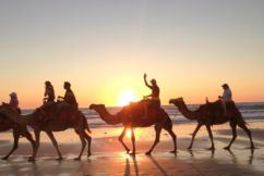 Perth to Broome for under $200