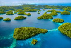 Steve 'Grumpy' Collins explains the Palau Pledge