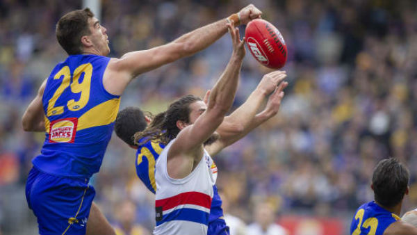 Article image for I don't want to put the club in a bad position: Scott Lycett
