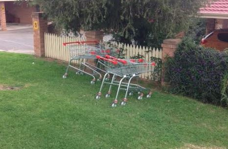 Article image for The collective noun for shopping trolleys?