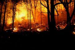 NSW declares bushfire State of Emergency: WA season underway