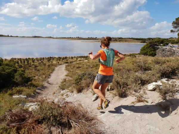 New run planned for Rotto