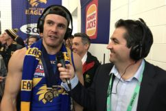 Shuey happy if he shared with Tim Kelly