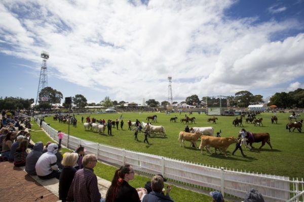 Putting the country back into the Perth Royal Show