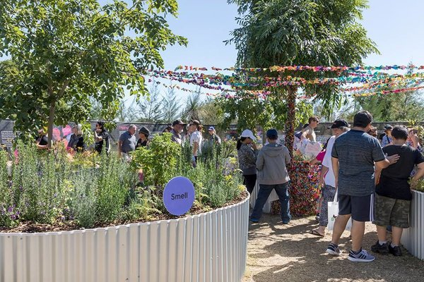 Gardening for good with Dementia, aged care and disability support group Chorus