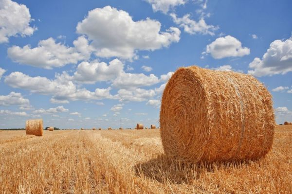 Farmers still waiting to donate bales