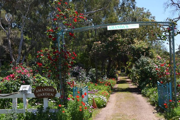 Will you go to the Amanda's Garden Fete this weekend?