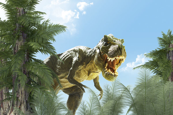 Could a dinosaur-era animal provide the clue to solve our cyber woes?