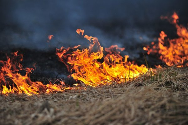 Are you prepared for bushfire season?