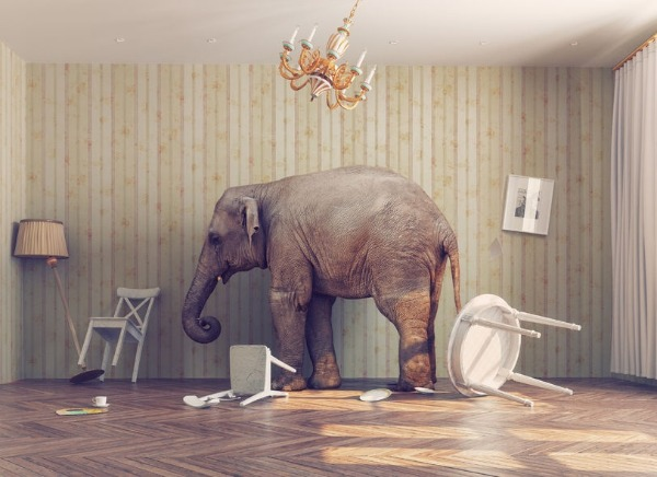 How do you talk about the elephant in the room?