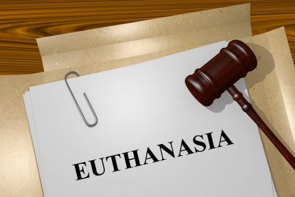 Article image for First person dies under WA's euthanasia laws