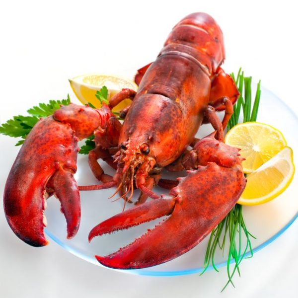 Lobster for the less fortunate on Christmas Day
