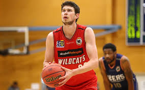 Steindl set for 150th game