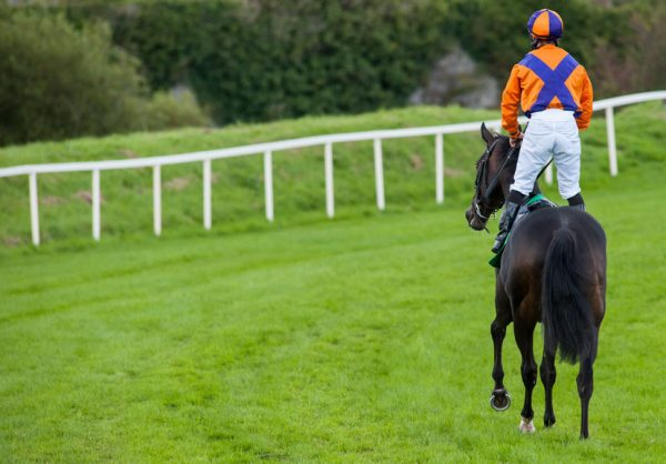 British horse racing suspended