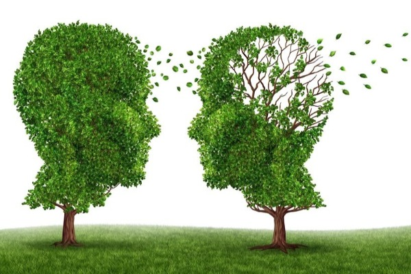 Could dementia be preventable?