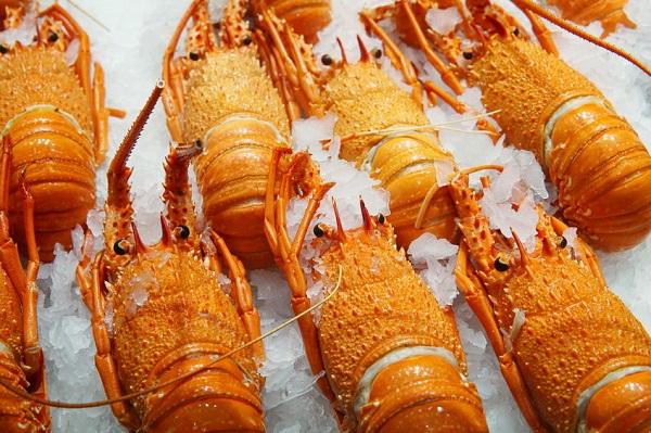 Coronavirus impacts WA crayfishing industry