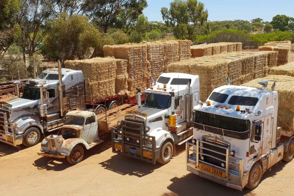Truckies drive mercy missions to starving stations