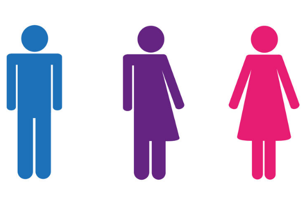 One Nation calls for boycott over gender neutral toilets at WA schools