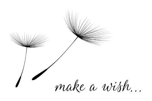 What a Wish…. would it be yours?