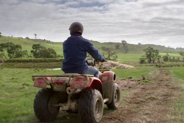 Article image for The quad bike debate