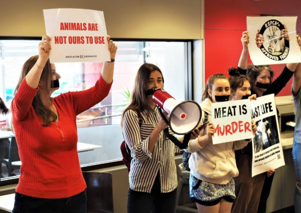 David Littleproud says vegan activism has become a freak show.