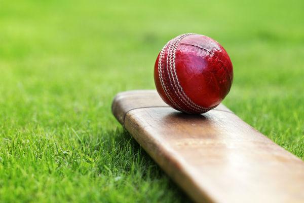 Article image for Cricket organisations slashing jobs