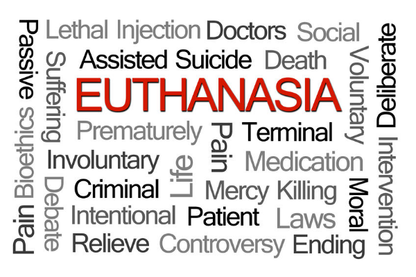 "AMA WA says euthanasia legislation is a ""rushed job"""