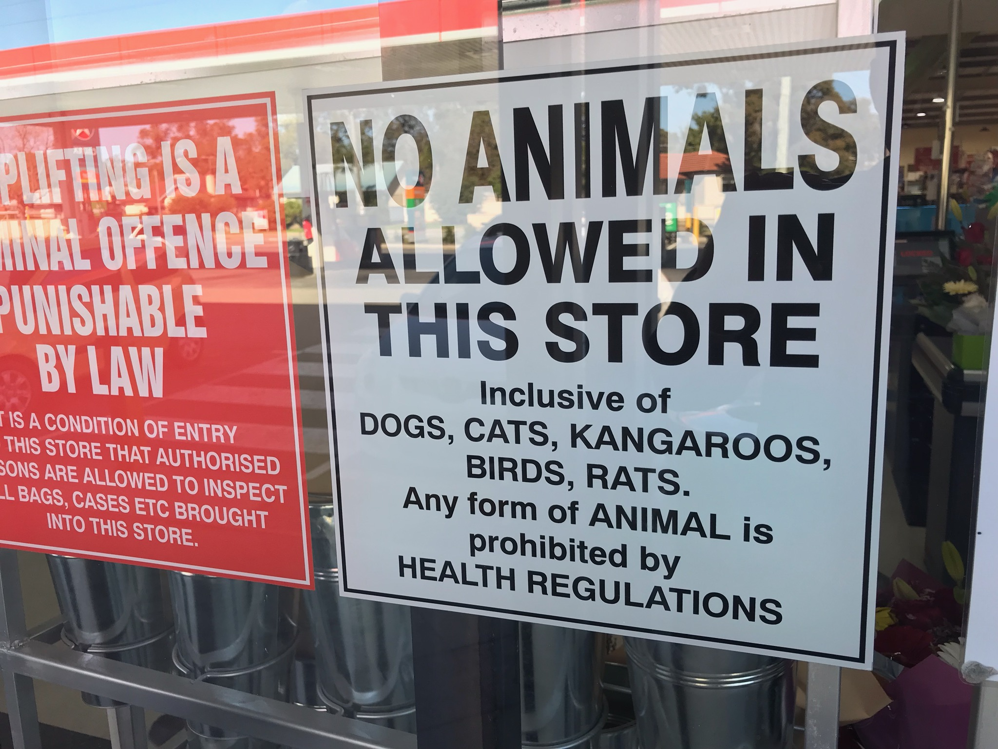 IGA Store's  sign  bans animals and for good reason.