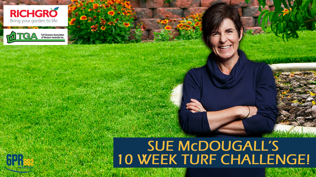 Sue McDougall's 10 week Turf Challenge