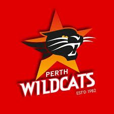 Can our Perth Wildcats break the NZ Breakers?