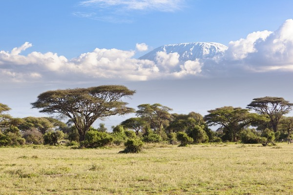 Our Travel Bug on the marvels of Africa and an unusual way to cruise