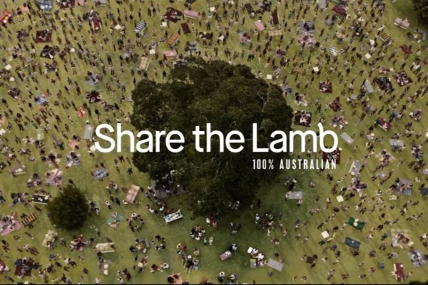 What's going on with the new lamb ad?