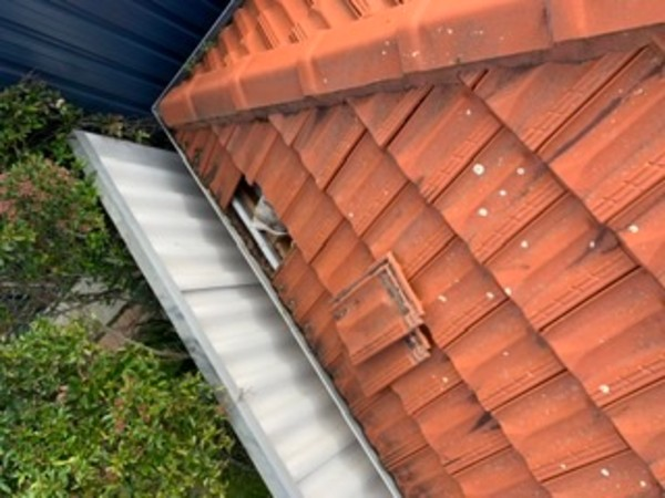 Article image for Roof rip off for Como resident