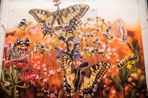 Article image for From London to South America to… the Scarborough Community Hub, Jerome Davenport has painted street art everywhere!