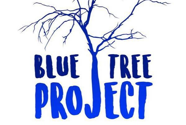 Latest on the Blue Tree Project with Kendall Whyte